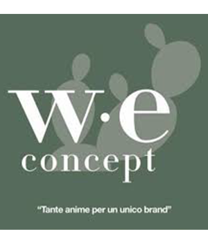 W.E. CONCEPT SRL